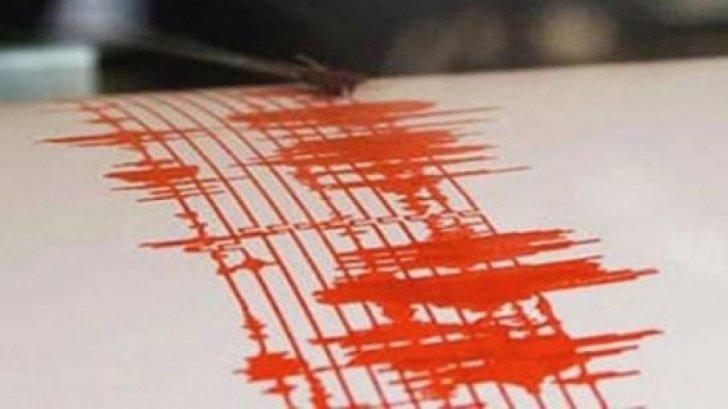 ALERT NEWS. Cutremur cu magnitudinea 4,1 în Vrancea