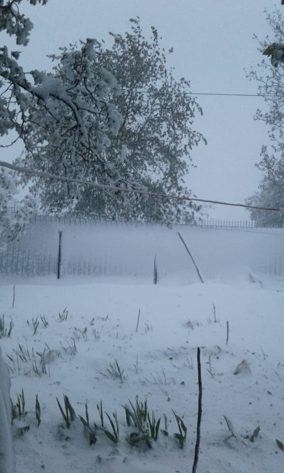 iarna in aprilie