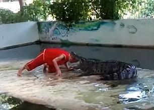 crocodil2