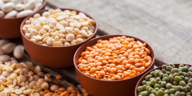 pastai-proteine