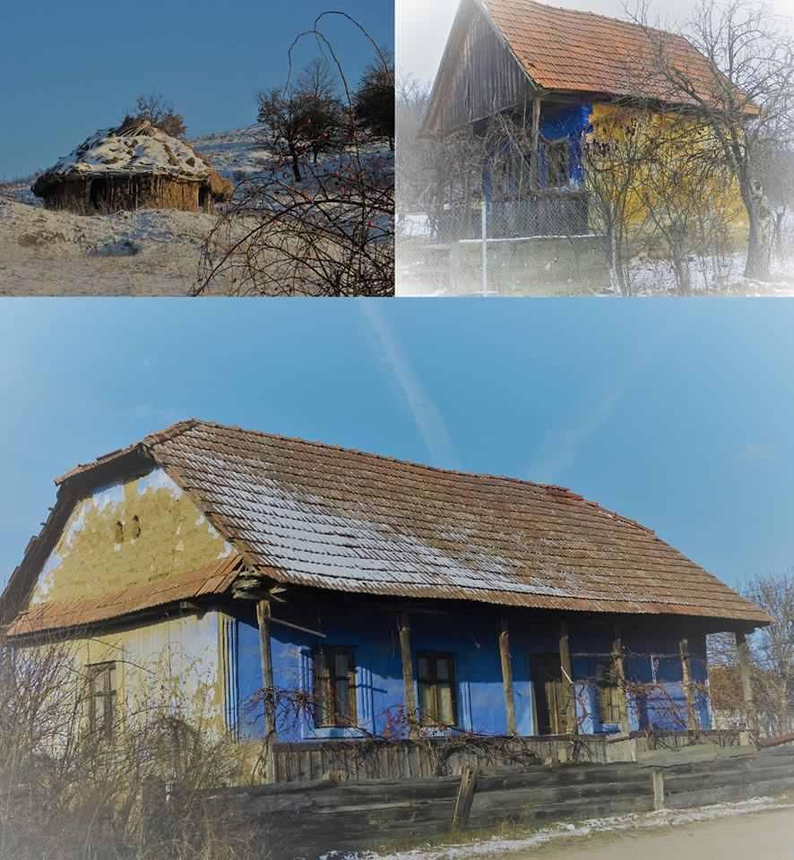 casa-naturala-din-hasmas-06