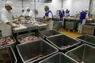 genocidul-servit-zilnic-la-farfurie-romanilor-cata-carne-contine-un-kilogram-de-carne